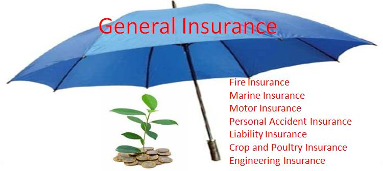 What is General Insurance In World?